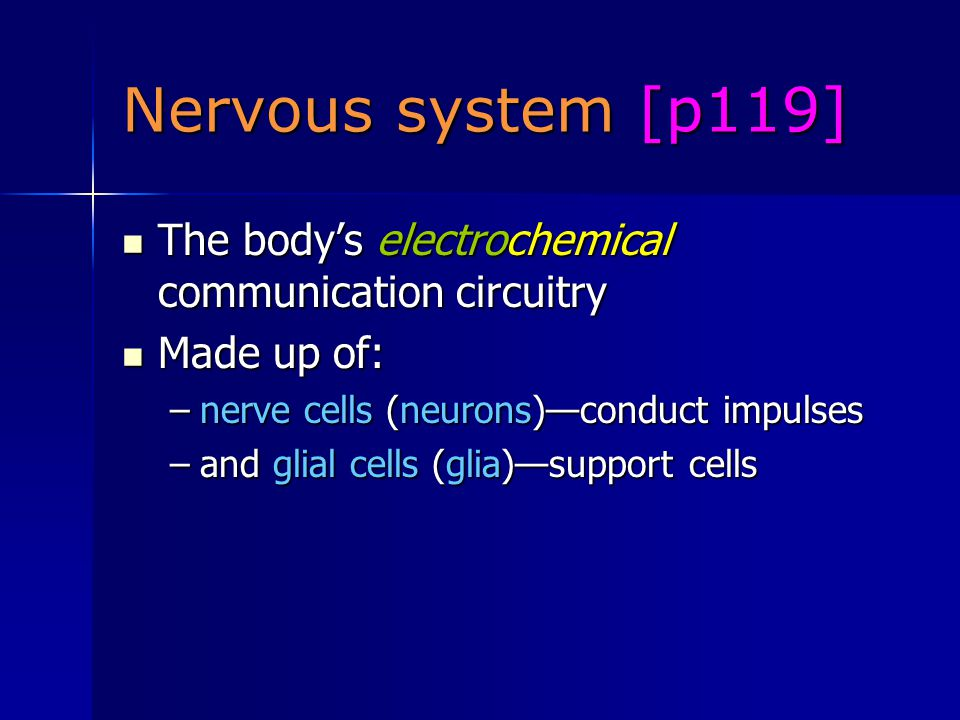 Nervous system [p119] The body's electrochemical communication circuitry The body's electrochemical communication circuitry Made up of: Made up of: –nerve cells (neurons)—conduct impulses –and glial cells (glia)—support cells