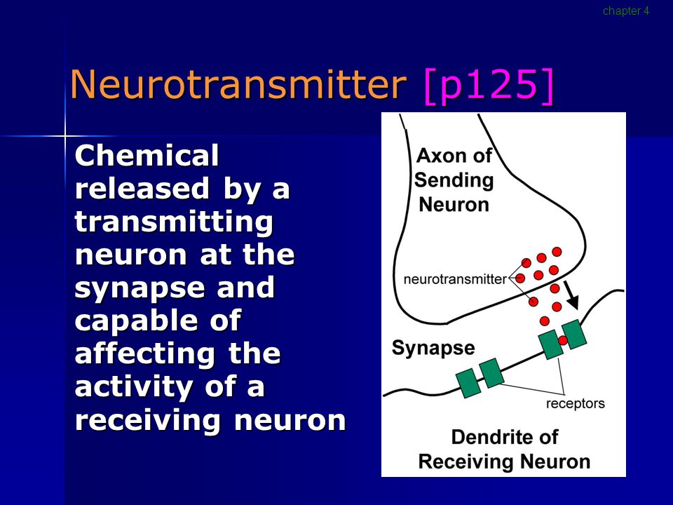 Neurotransmitter [p125] Chemical released by a transmitting neuron at the synapse and capable of affecting the activity of a receiving neuron chapter 4