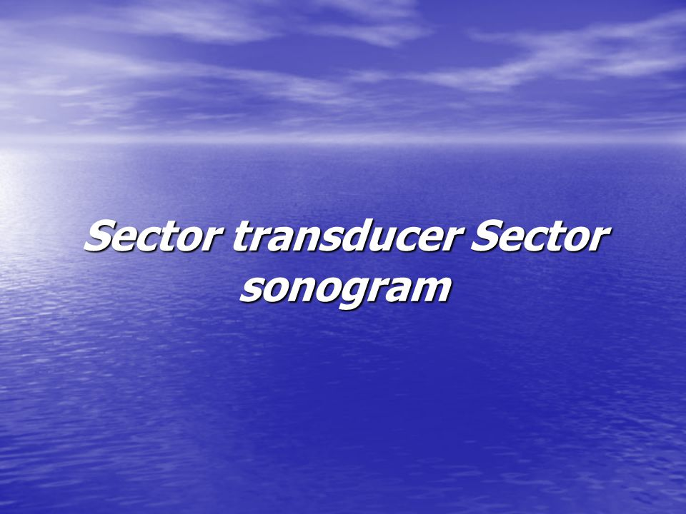 Sector transducer Sector sonogram