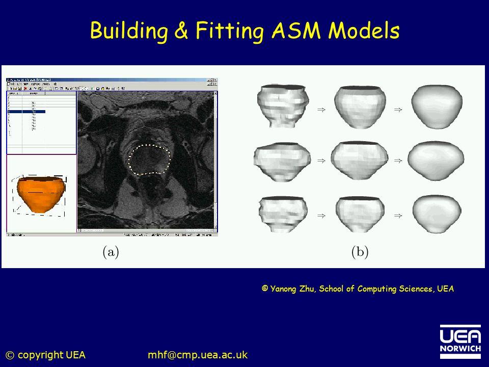 © copyright UEAmhf@cmp.uea.ac.uk Building & Fitting ASM Models © Yanong Zhu, School of Computing Sciences, UEA