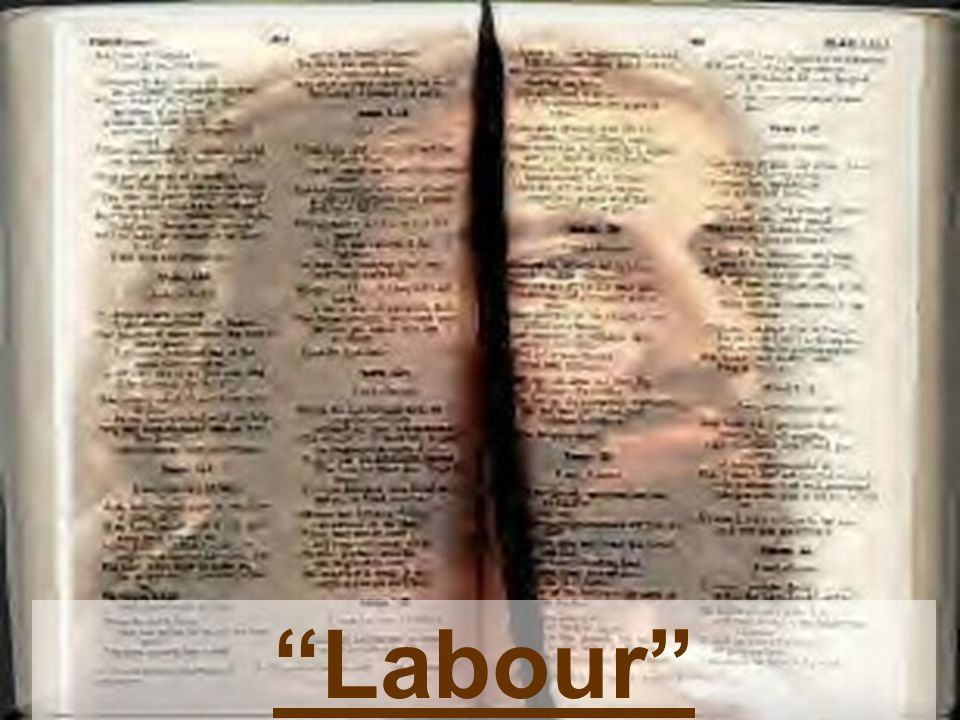 """""""Labour"""""""