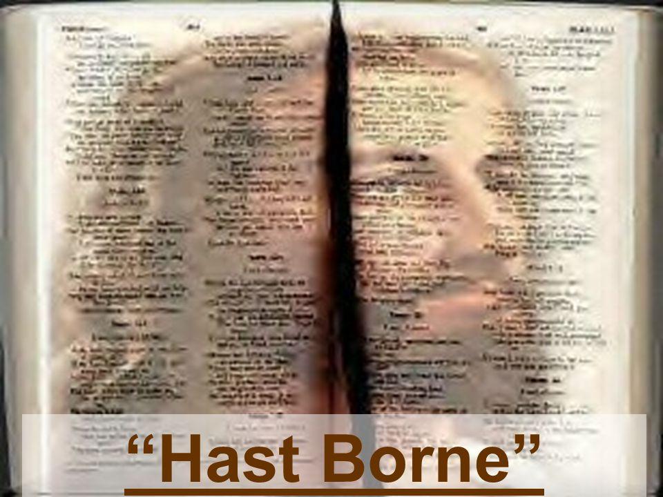 """""""Hast Borne"""""""