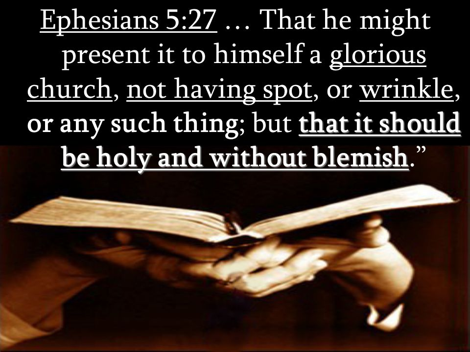that it should be holy and without blemish Ephesians 5:27 … That he might present it to himself a glorious church, not having spot, or wrinkle, or any such thing; but that it should be holy and without blemish.