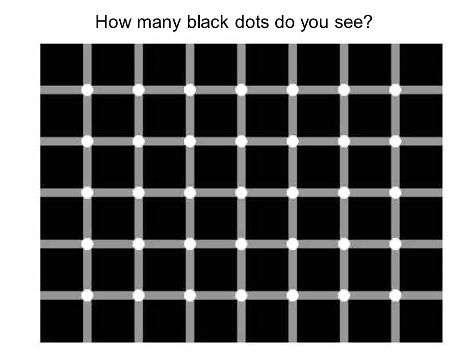 How many black dots do you see