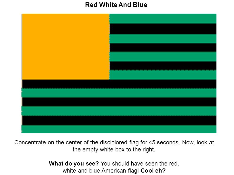 Red White And Blue Concentrate on the center of the disclolored flag for 45 seconds. Now, look at the empty white box to the right. What do you see? Y