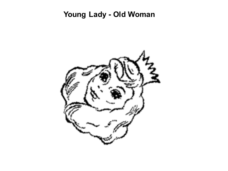 Young Lady - Old Woman