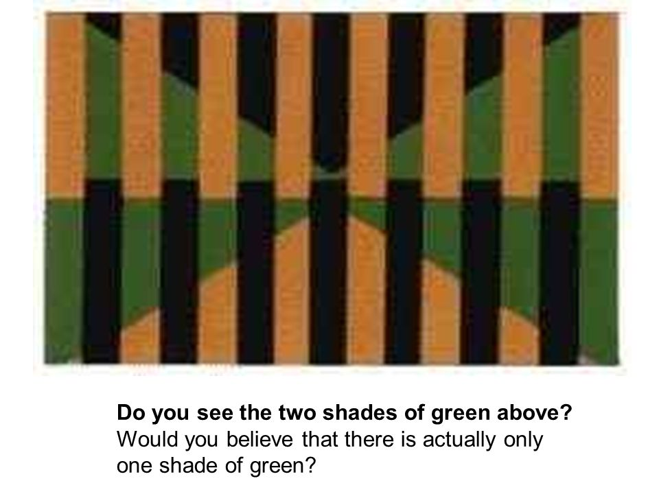 Do you see the two shades of green above.