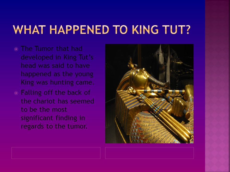  The Tumor that had developed in King Tut's head was said to have happened as the young King was hunting came.  Falling off the back of the chariot