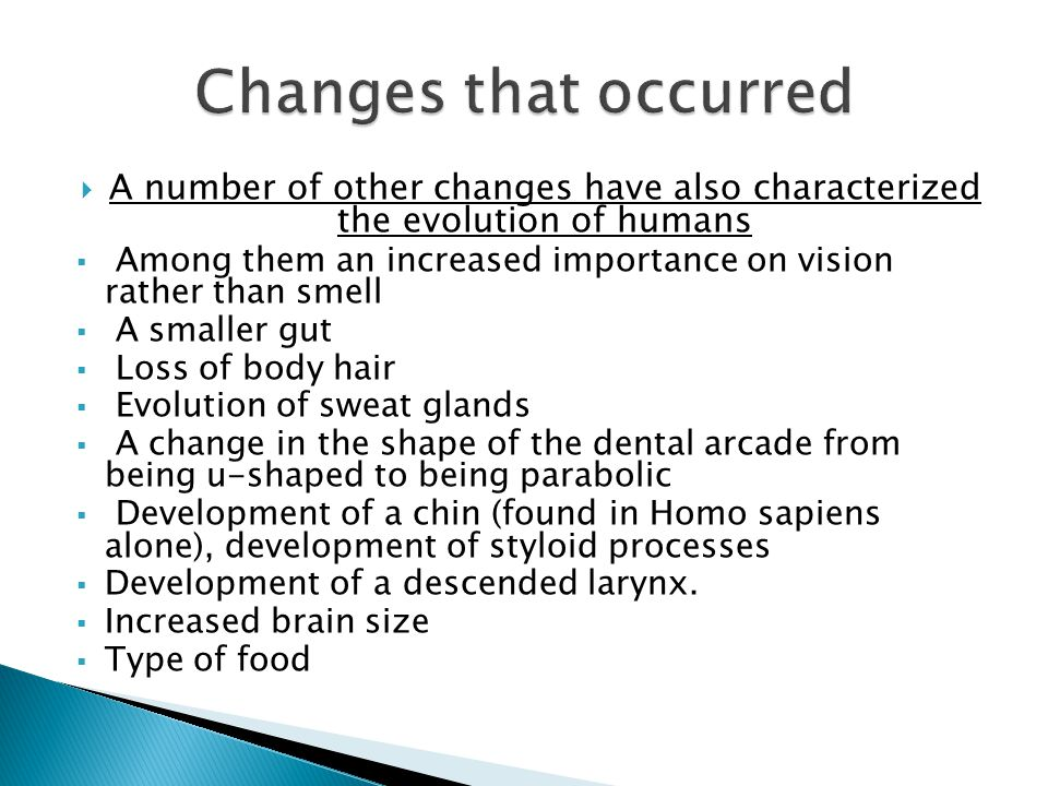  A number of other changes have also characterized the evolution of humans  Among them an increased importance on vision rather than smell  A smaller gut  Loss of body hair  Evolution of sweat glands  A change in the shape of the dental arcade from being u-shaped to being parabolic  Development of a chin (found in Homo sapiens alone), development of styloid processes  Development of a descended larynx.