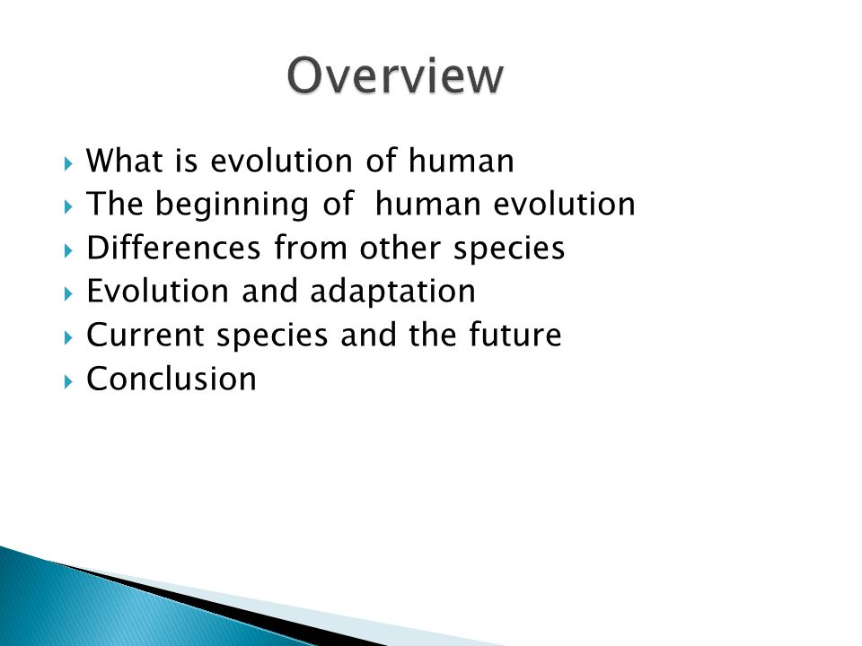  What is evolution of human  The beginning of human evolution  Differences from other species  Evolution and adaptation  Current species and the future  Conclusion