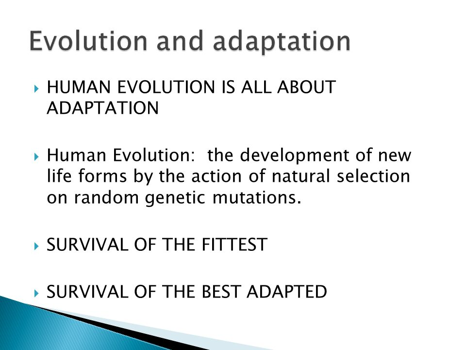  HUMAN EVOLUTION IS ALL ABOUT ADAPTATION  Human Evolution: the development of new life forms by the action of natural selection on random genetic mutations.
