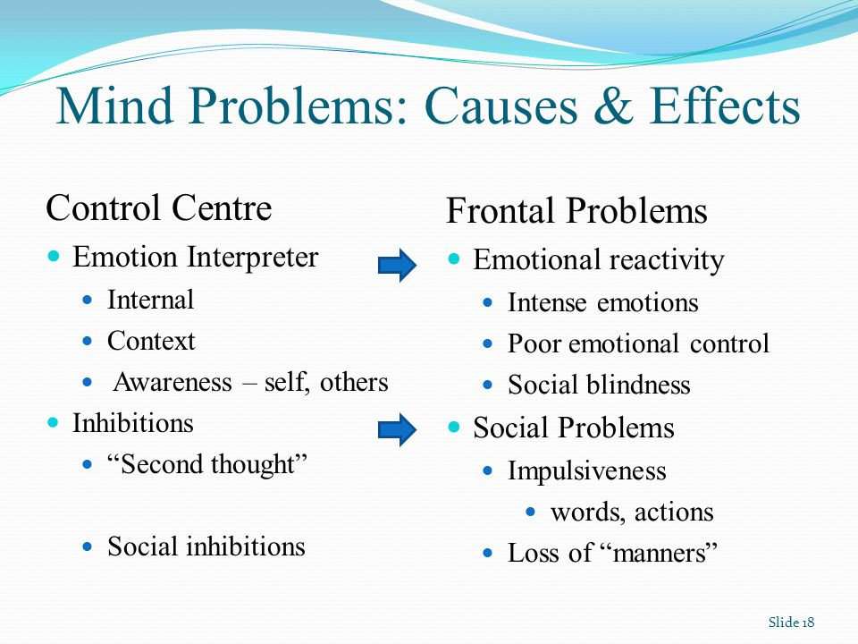 Mind Problems: Causes & Effects Control Centre Emotion Interpreter Internal Context Awareness – self, others Inhibitions Second thought Social inhibitions Frontal Problems Emotional reactivity Intense emotions Poor emotional control Social blindness Social Problems Impulsiveness words, actions Loss of manners Slide 18