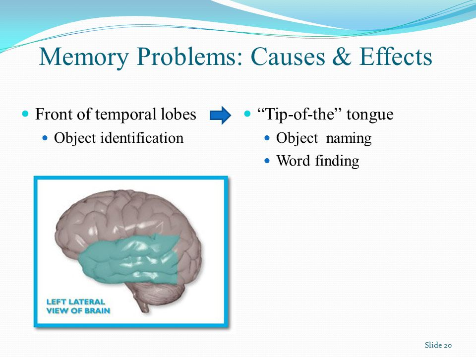 Memory Problems: Causes & Effects Tip-of-the tongue Object naming Word finding Front of temporal lobes Object identification Slide 20