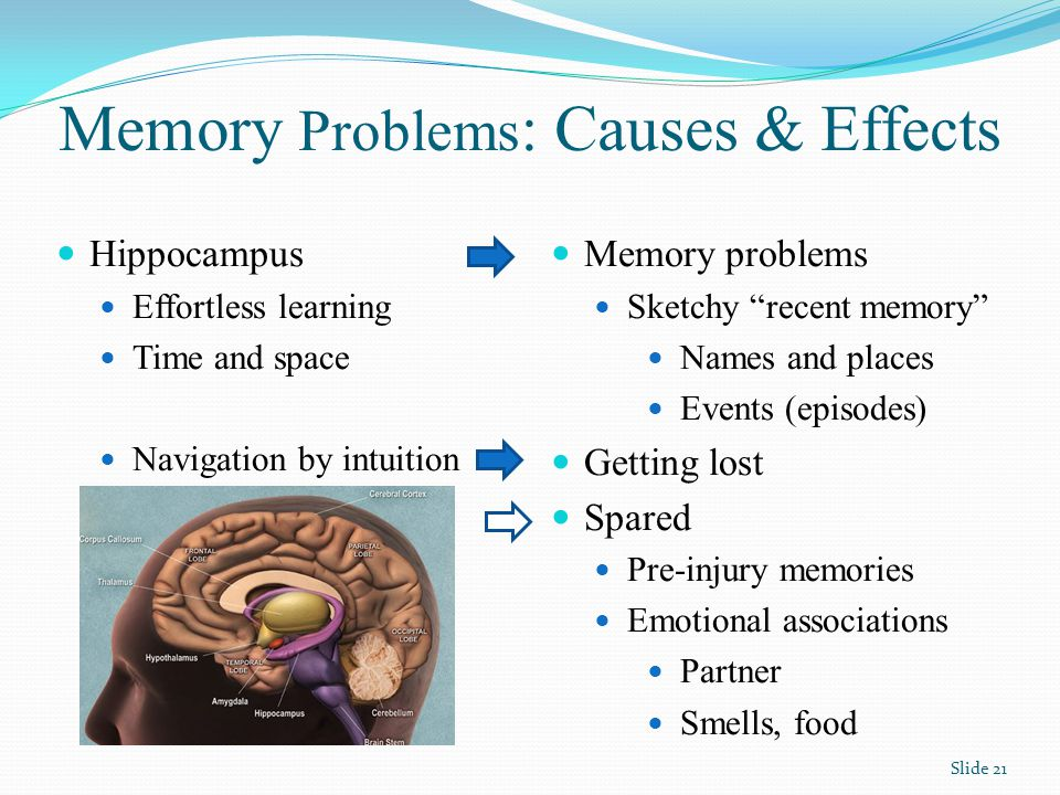 Memory Problems : Causes & Effects Memory problems Sketchy recent memory Names and places Events (episodes) Getting lost Spared Pre-injury memories Emotional associations Partner Smells, food Hippocampus Effortless learning Time and space Navigation by intuition Slide 21