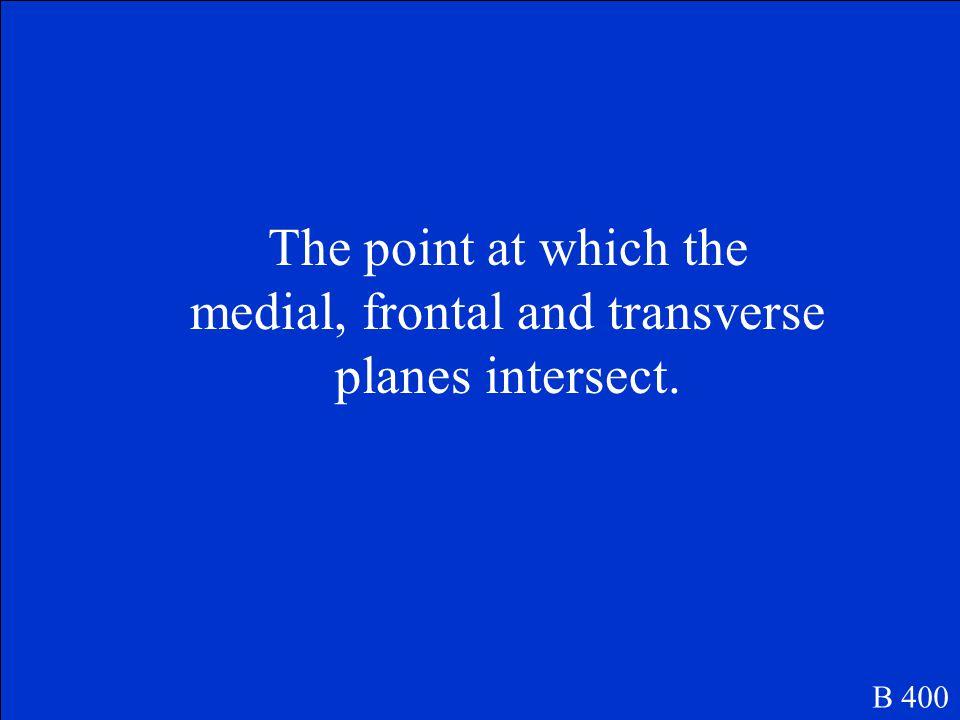 What is Transvers/Horizontal Plane? B 300