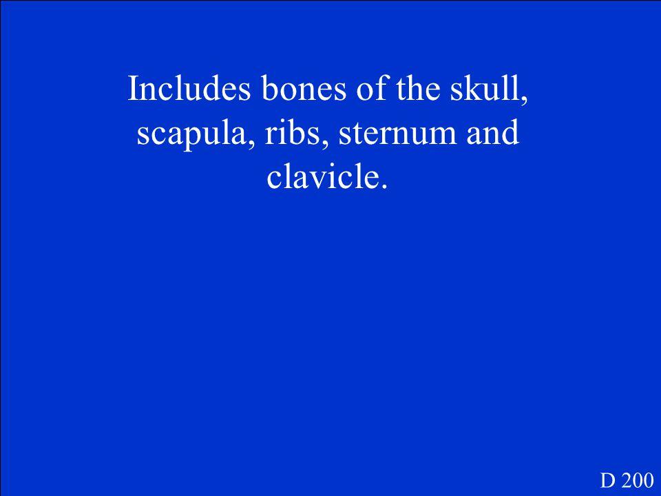 What are long bones? D 100