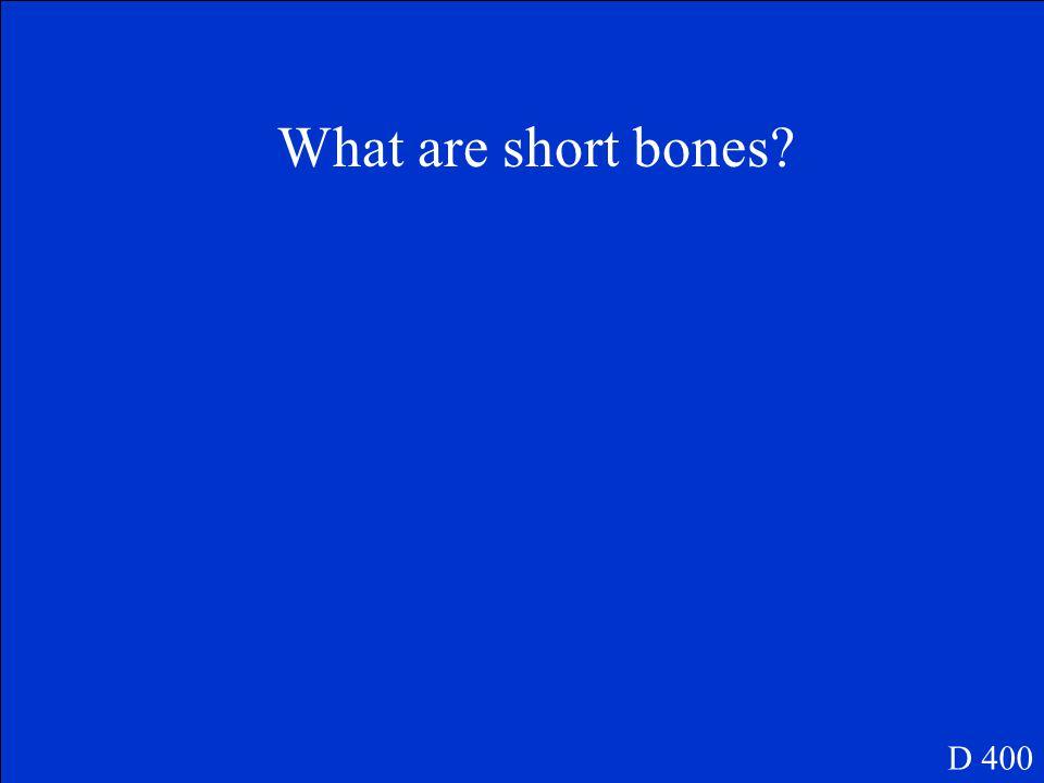 Includes bones of the trasals and carpals D 400