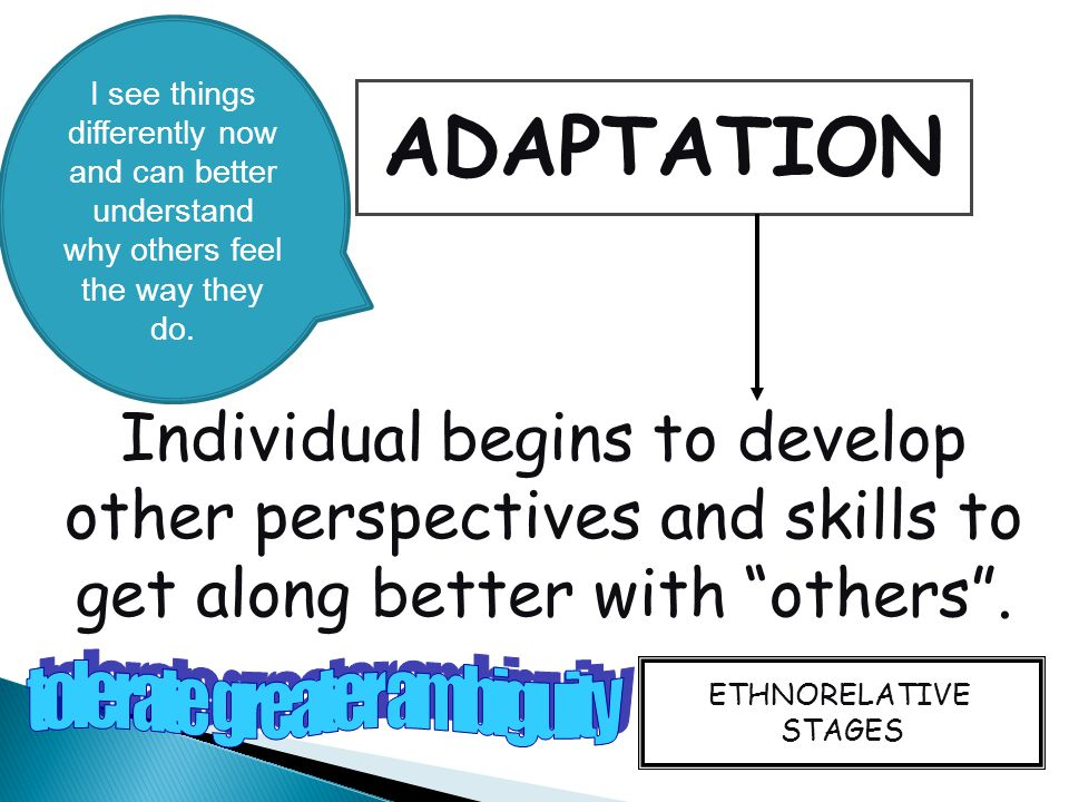 ADAPTATION Individual begins to develop other perspectives and skills to get along better with others .