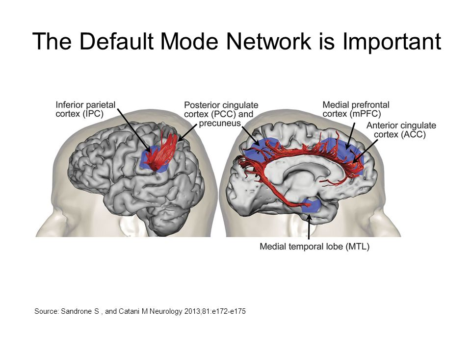 The Default Mode Network is Important Source: Sandrone S, and Catani M Neurology 2013;81:e172-e175