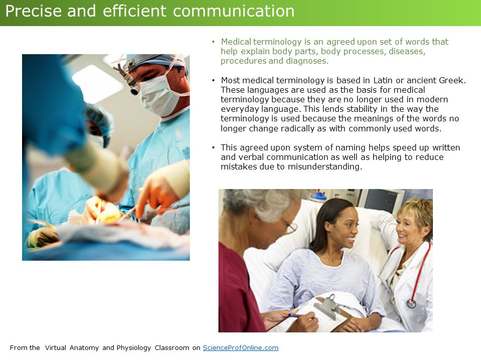 From the Virtual Anatomy and Physiology Classroom on ScienceProfOnline.comScienceProfOnline.com Precise and efficient communication Medical terminolog