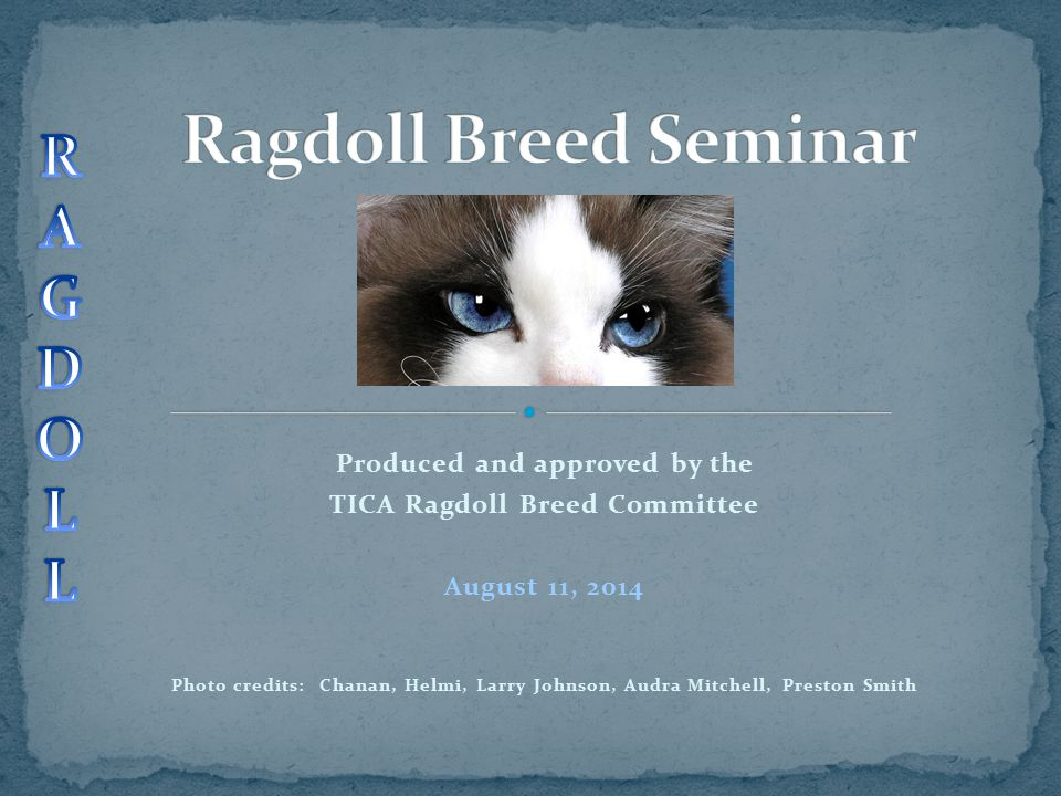 Produced and approved by the TICA Ragdoll Breed Committee August 11, 2014 Photo credits: Chanan, Helmi, Larry Johnson, Audra Mitchell, Preston Smith