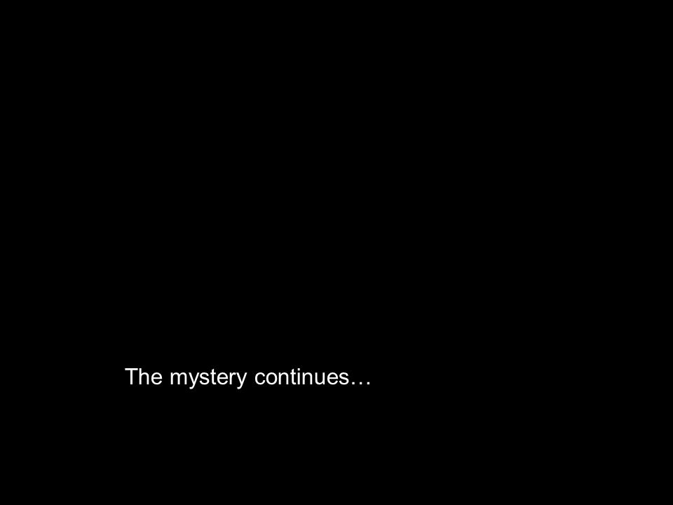 M URDER TRA L The mystery continues…