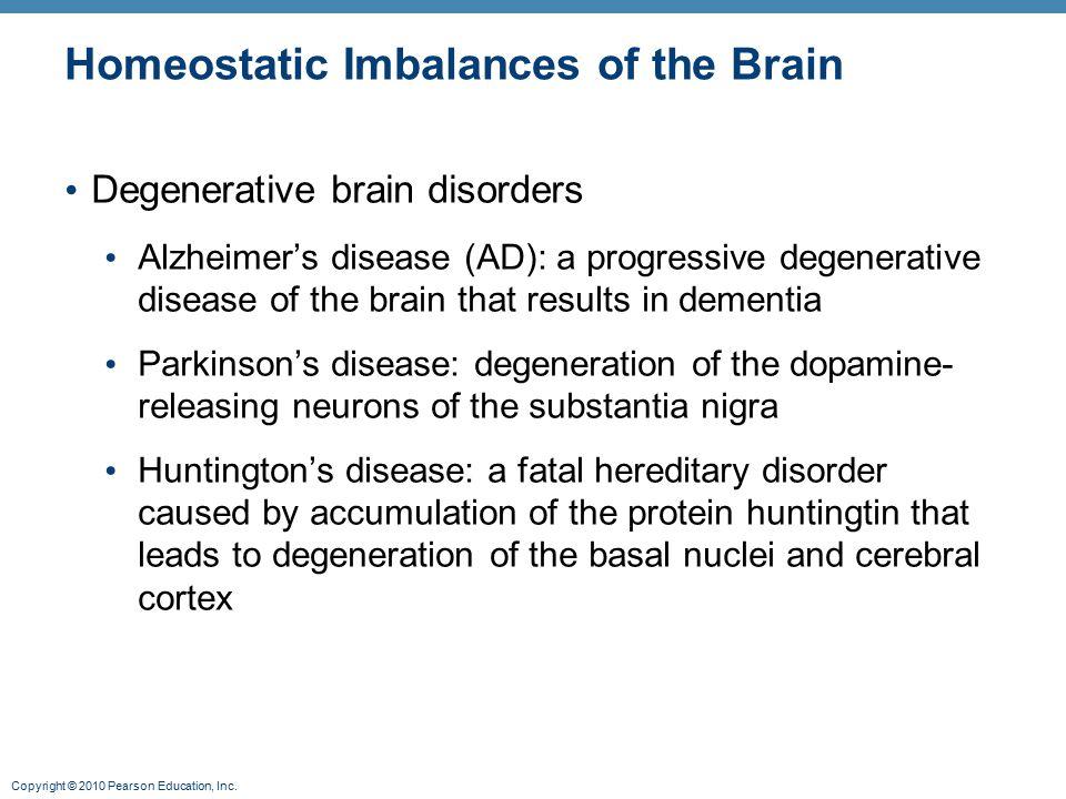 Copyright © 2010 Pearson Education, Inc. Homeostatic Imbalances of the Brain Degenerative brain disorders Alzheimer's disease (AD): a progressive dege