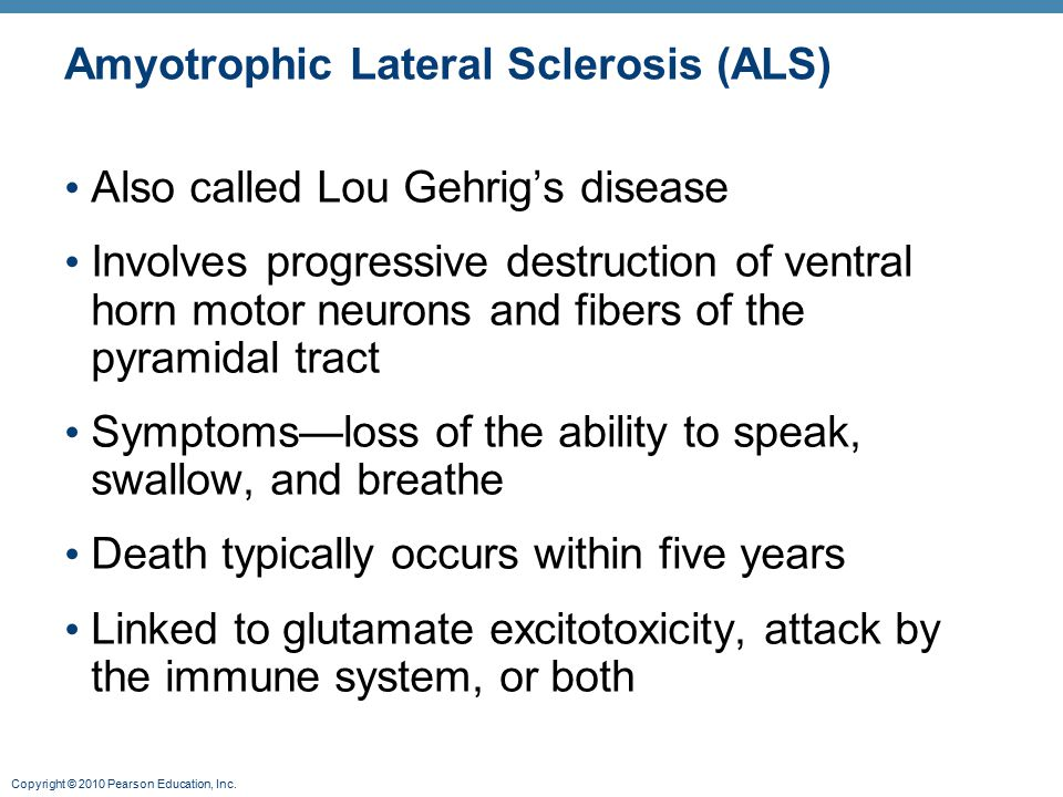 Copyright © 2010 Pearson Education, Inc. Amyotrophic Lateral Sclerosis (ALS) Also called Lou Gehrig's disease Involves progressive destruction of vent