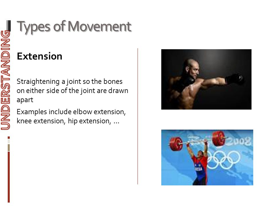 Types of Movement Extension Straightening a joint so the bones on either side of the joint are drawn apart Examples include elbow extension, knee exte