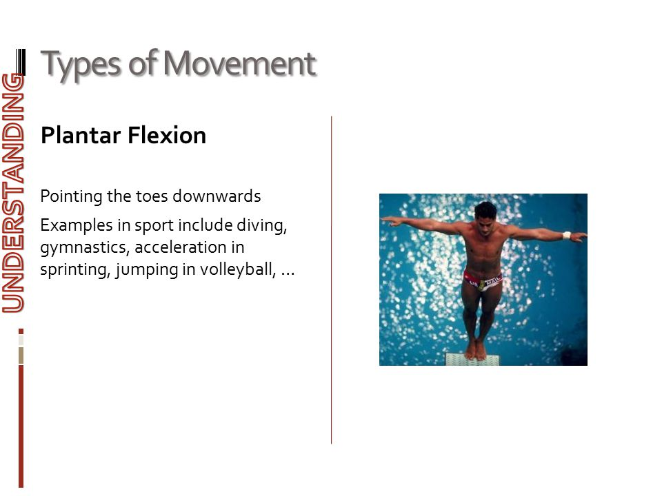 Types of Movement Plantar Flexion Pointing the toes downwards Examples in sport include diving, gymnastics, acceleration in sprinting, jumping in voll
