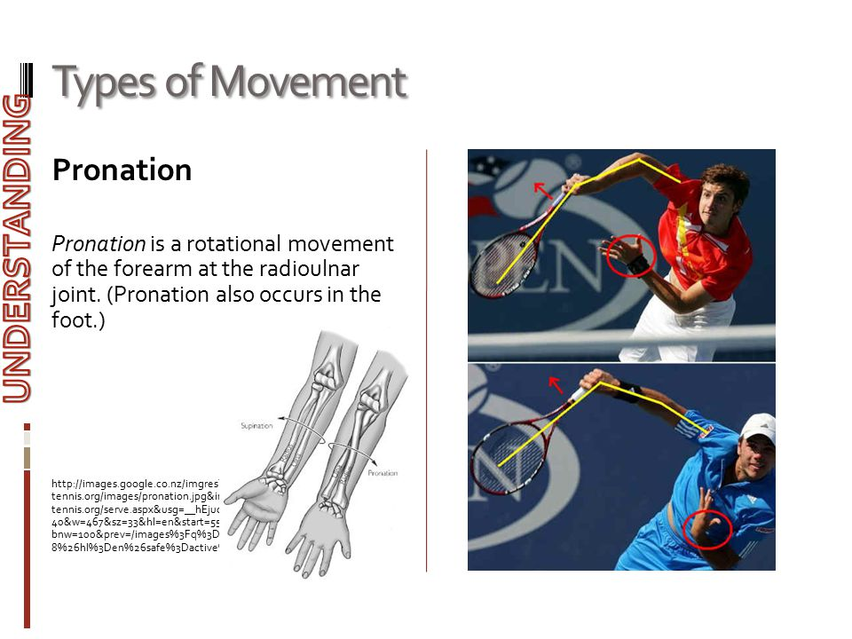 Types of Movement Pronation Pronation is a rotational movement of the forearm at the radioulnar joint. (Pronation also occurs in the foot.) http://ima