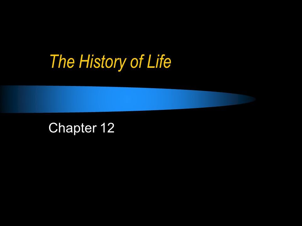 The History of Life Chapter 12