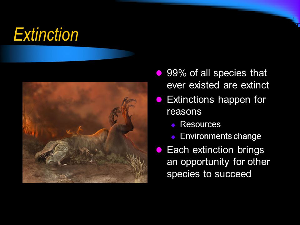 Extinction 99% of all species that ever existed are extinct Extinctions happen for reasons  Resources  Environments change Each extinction brings an