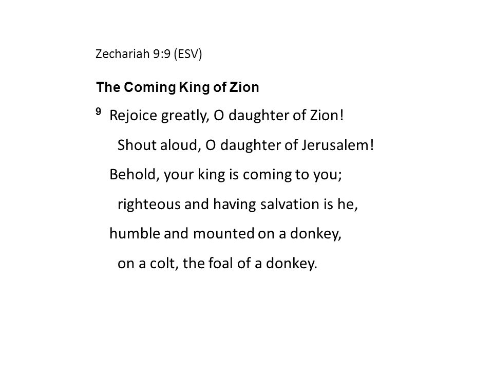 Zechariah 9:9 (ESV) The Coming King of Zion 9 Rejoice greatly, O daughter of Zion.
