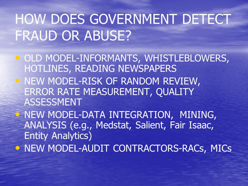HOW DOES GOVERNMENT DETECT FRAUD OR ABUSE.