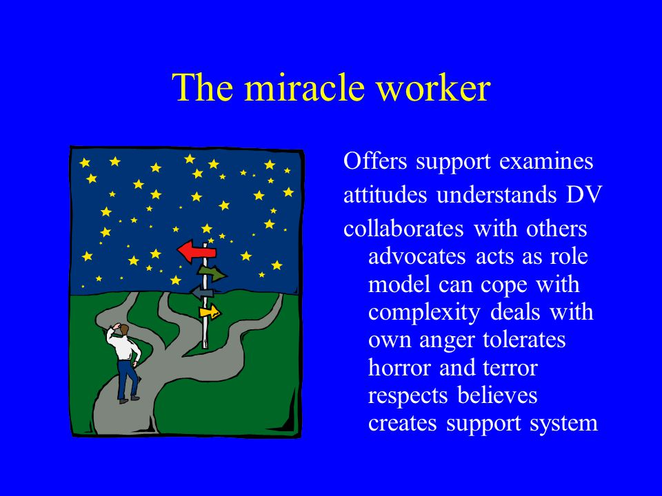The miracle worker Offers support examines attitudes understands DV collaborates with others advocates acts as role model can cope with complexity dea