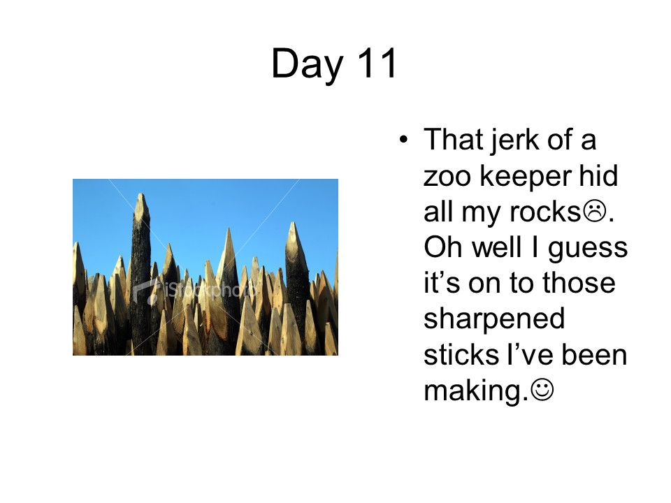 Day 11 That jerk of a zoo keeper hid all my rocks .