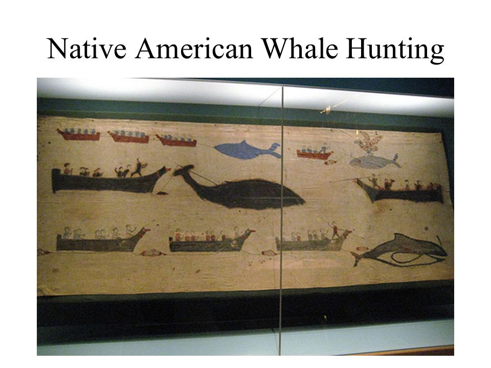 Native American Whale Hunting