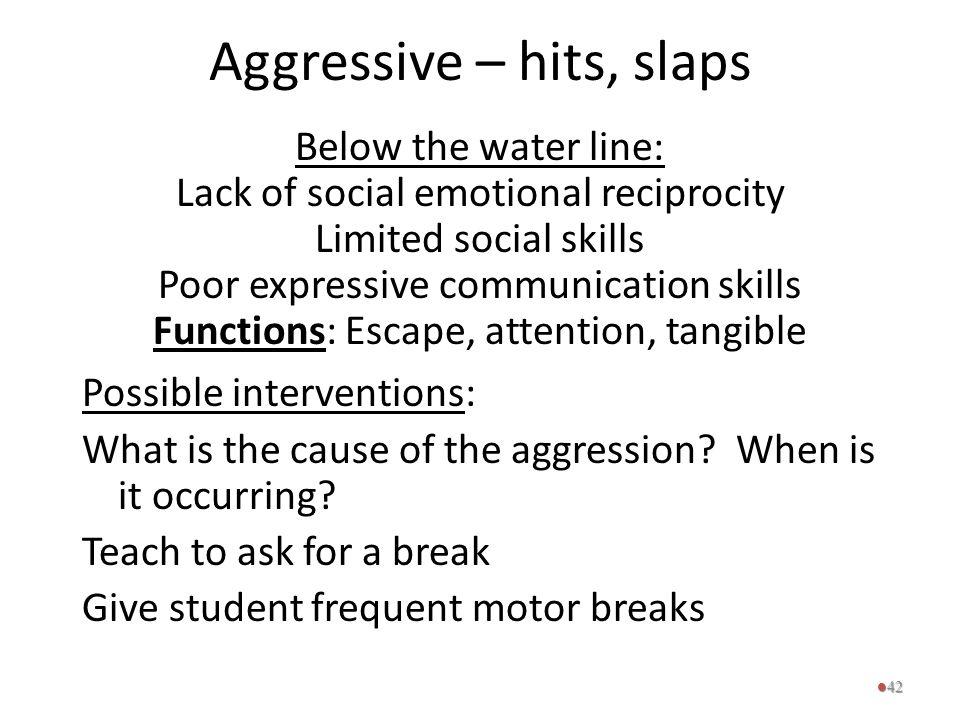Aggressive – hits, slaps Below the water line: Lack of social emotional reciprocity Limited social skills Poor expressive communication skills Functio