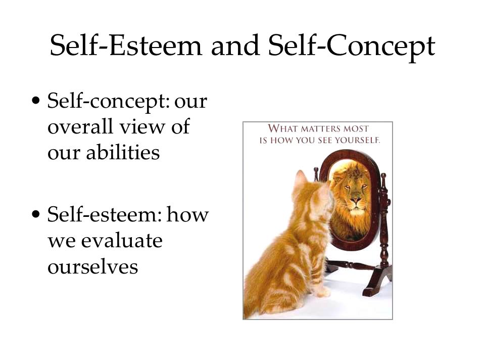 Self-Esteem and Self-Concept Self-concept: our overall view of our abilities Self-esteem: how we evaluate ourselves