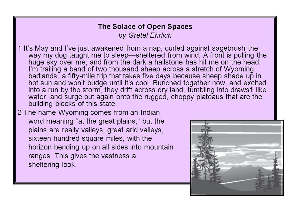 The Solace of Open Spaces by Gretel Ehrlich 1 It's May and I've just awakened from a nap, curled against sagebrush the way my dog taught me to sleep—s