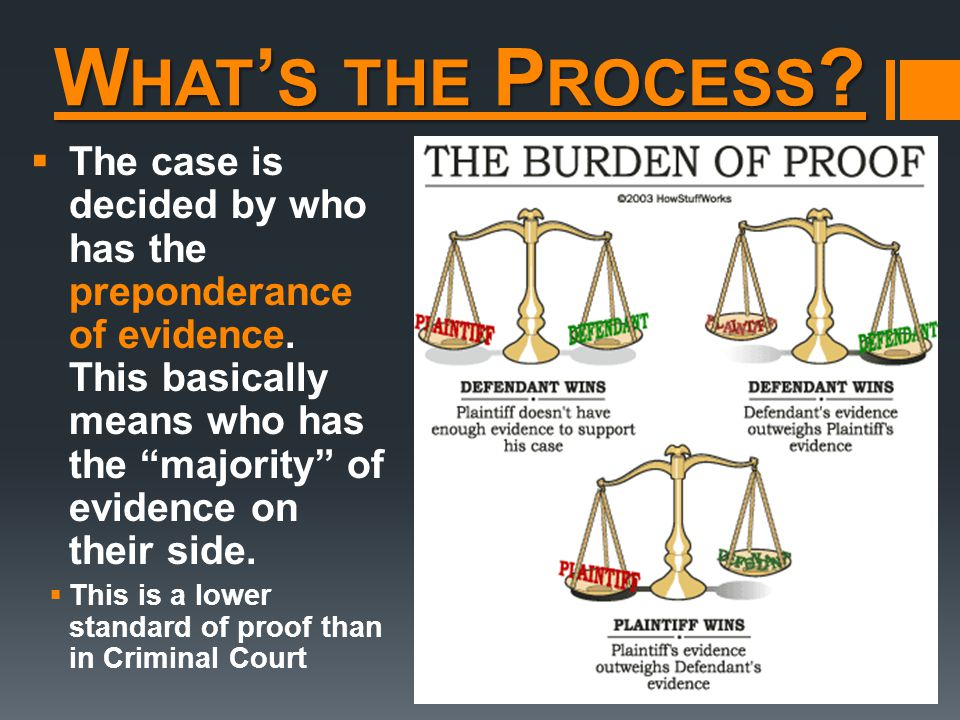 W HAT ' S THE P ROCESS .  The case is decided by who has the preponderance of evidence.