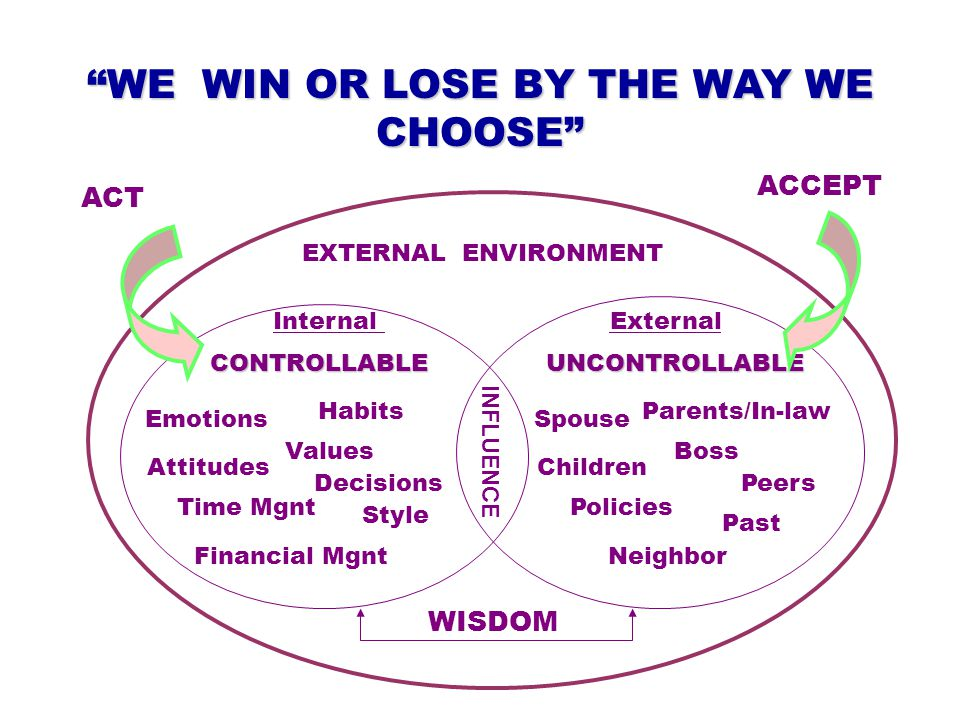 CONTROLLABLE WE WIN OR LOSE BY THE WAY WE CHOOSE UNCONTROLLABLE Spouse Children Parents/In-law Boss Peers Policies Past Neighbor ExternalInternal Emotions Attitudes Habits Values Style Time Mgnt Decisions Financial Mgnt ACCEPT ACT WISDOM EXTERNAL ENVIRONMENT INFLUENCE
