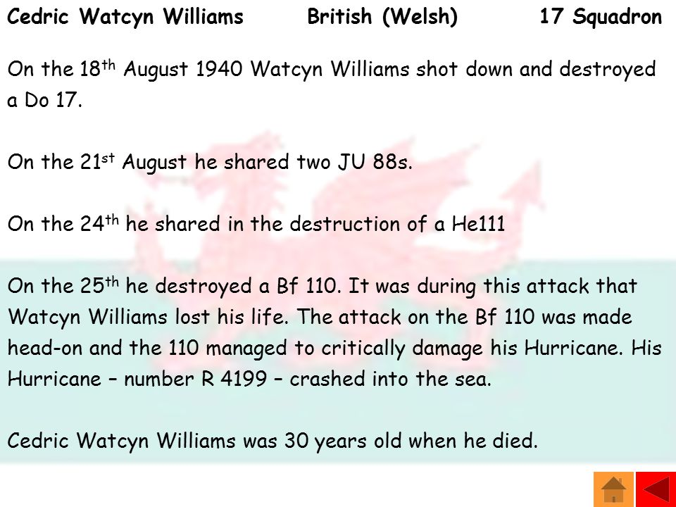 Cedric Watcyn Williams British (Welsh) 17 Squadron On the 18 th August 1940 Watcyn Williams shot down and destroyed a Do 17.