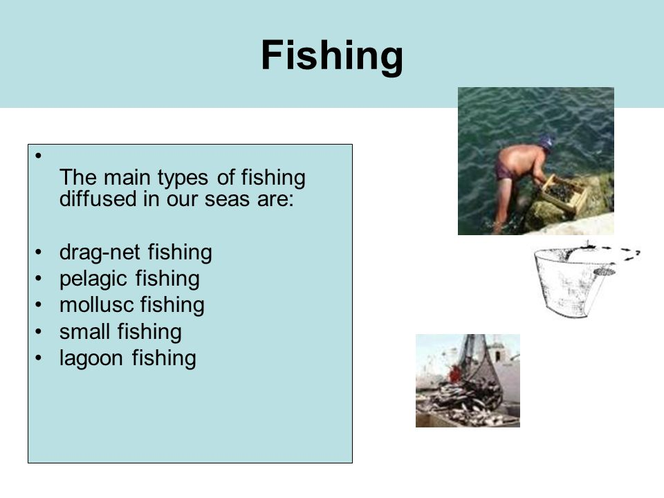 Fishing The main types of fishing diffused in our seas are: drag-net fishing pelagic fishing mollusc fishing small fishing lagoon fishing