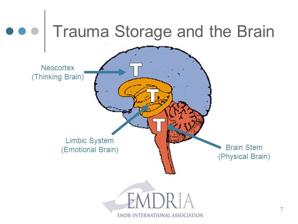 Trauma Storage and the Brain 7 Neocortex (Thinking Brain) Limbic System (Emotional Brain) Brain Stem (Physical Brain)