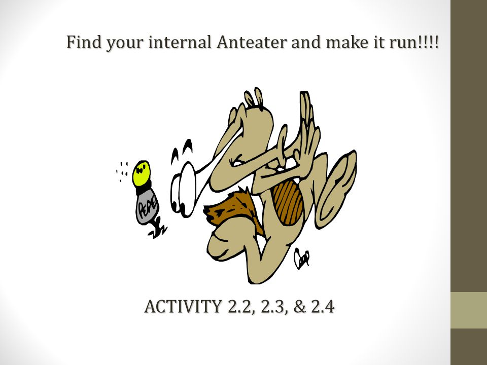 Find your internal Anteater and make it run!!!! ACTIVITY 2.2, 2.3, & 2.4