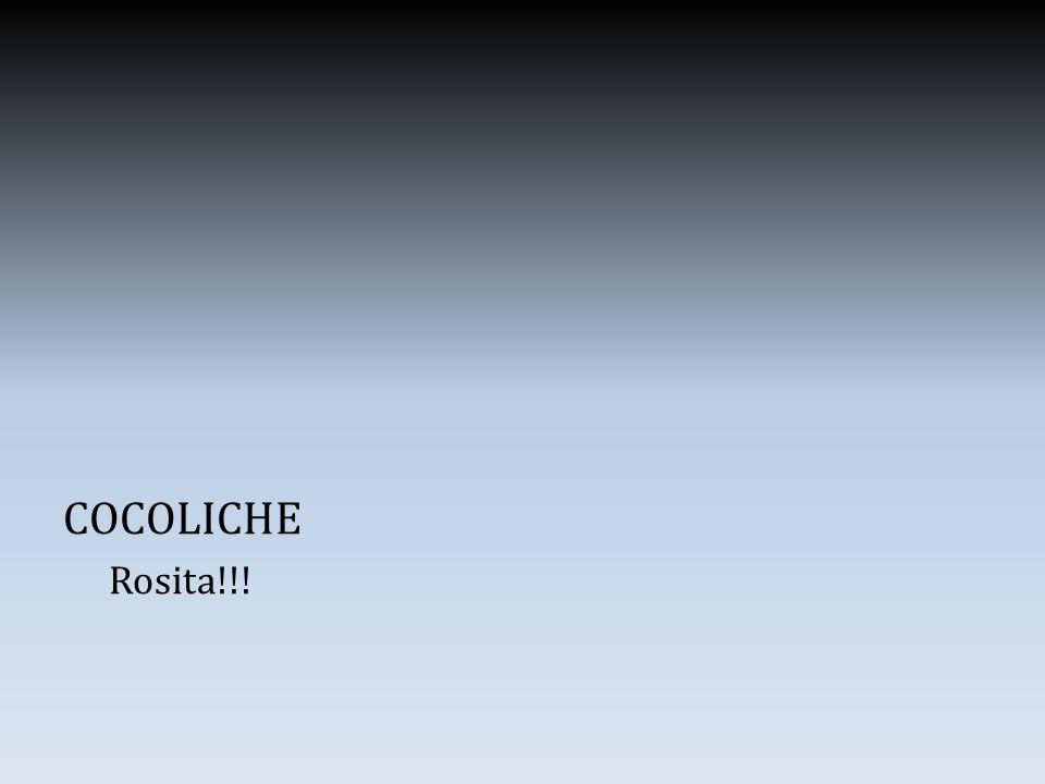 COCOLICHE Rosita!!!