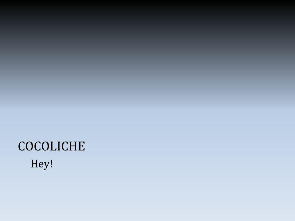 COCOLICHE Hey!
