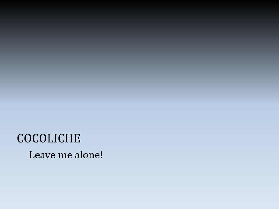 COCOLICHE Leave me alone!